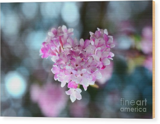Pink Spring Heart Wood Print