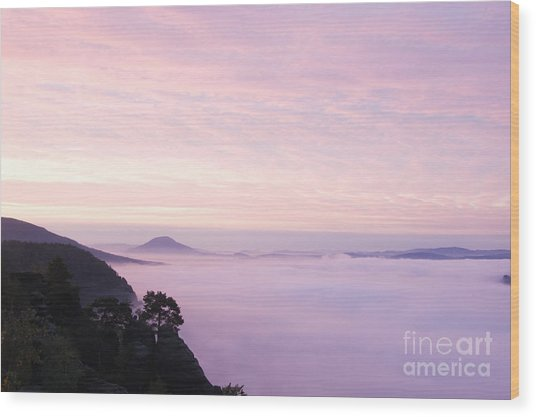 Pink Sunrise Wood Print