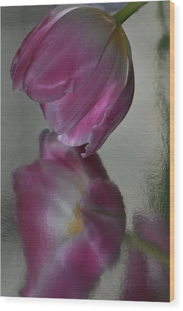 Pink Tulip Reflected In Silver Water Wood Print
