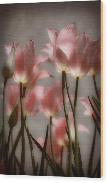 Pink Tulips Glow Wood Print
