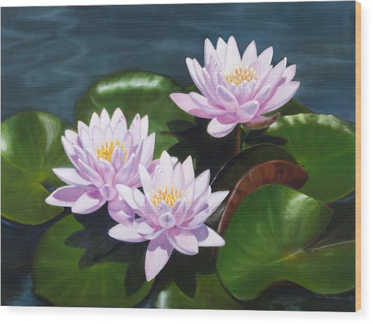 Pink Water Lilies - Oil Painting On Canvas Wood Print