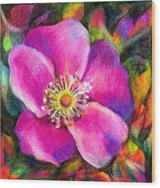 Pink Wild Flower. Alberta Flood Project Wood Print