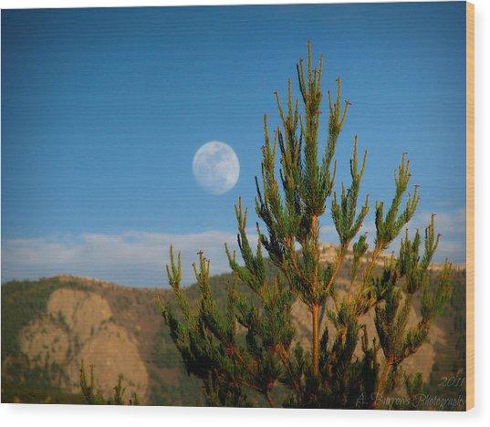 Pinyon Moon Wood Print