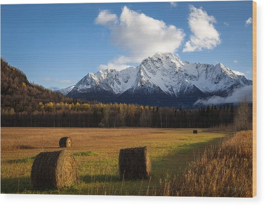 Pioneer Hay Fields Wood Print