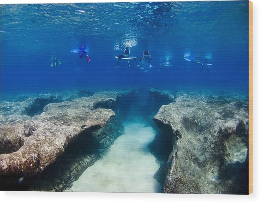 Pipeline's Hungry Reef Wood Print