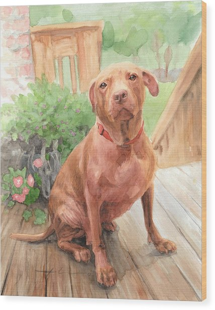 Pitbull Watercolor Portrait Wood Print by Mike Theuer