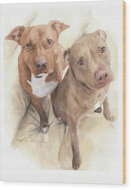 Pitbulls Watercolor Portrait Wood Print by Mike Theuer