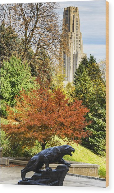 Pitt Panther And Cathedral Of Learning Wood Print