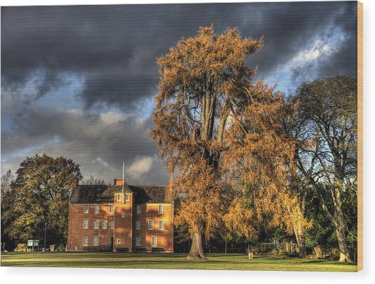 Pittencrieff House Wood Print