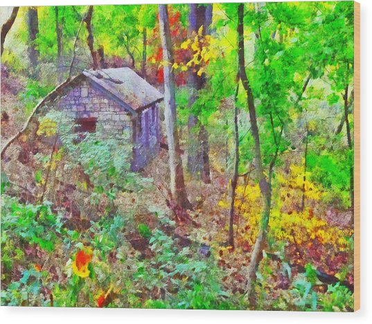 Pittsburgh's Frick Park In October. Green Wood Print