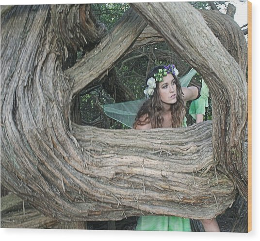 Pixie Looking Through Tree Wood Print