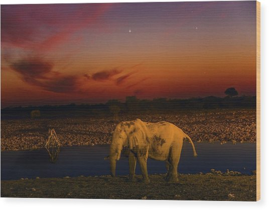 Planetary Conjunction And An Elephant Wood Print