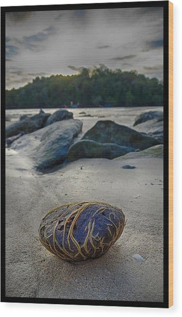Plant-covered Rock In Krabi Wood Print by River Engel