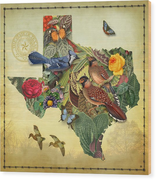 Nature Map Of Texas Wood Print