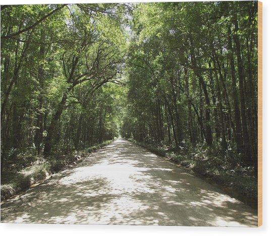 Plantation Road Wood Print