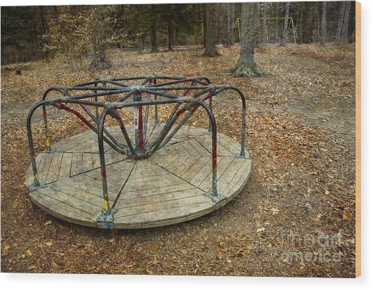 Playground In The Woods Wood Print