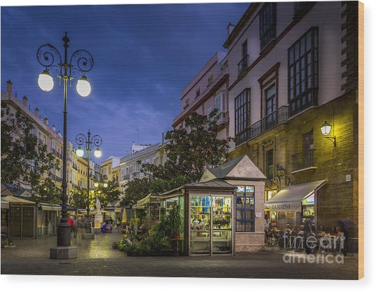 Plaza De Las Flores Cadiz Spain Wood Print