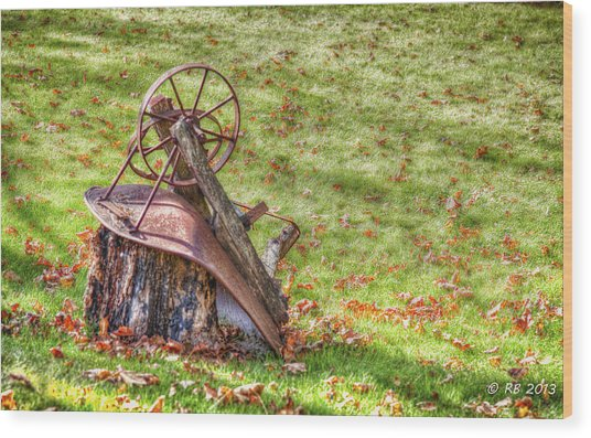 Pleasure's Of Autumn Wood Print by Richard Bean