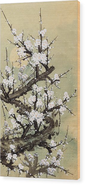 Plum Blossom Wood Print by Vii-photo