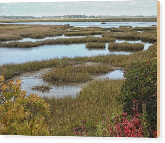 Plum Island Marshes In Autumn 2 Wood Print