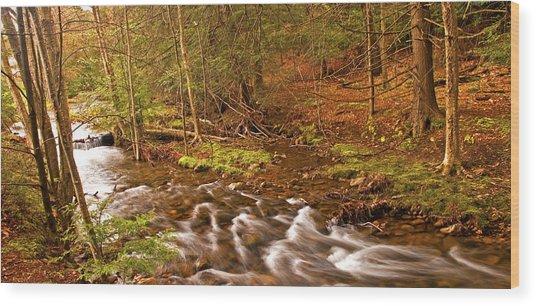 Pocono Mountain Stream Pennsylvania Wood Print by A Gurmankin