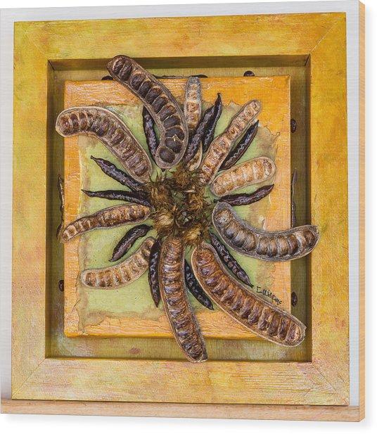 Pods No. 2 Wood Print