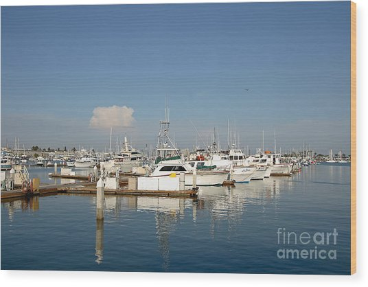 Point Loma Marina Wood Print by Russell Christie