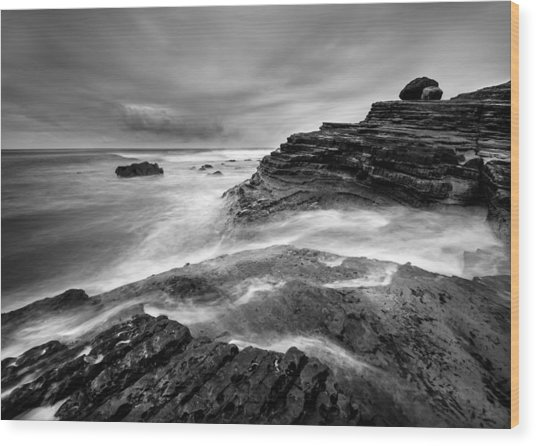 Point Loma Tide Pools Wood Print