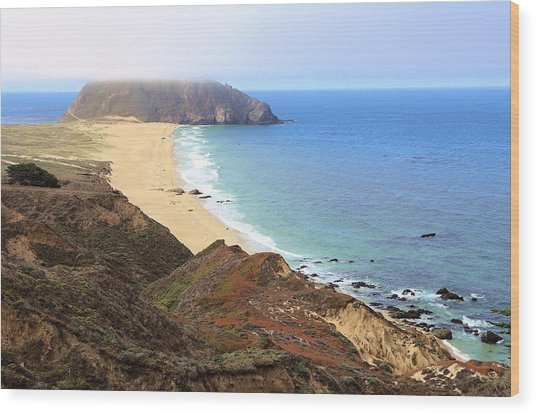 Point Sur Lighthouse In Marina Layer Wood Print