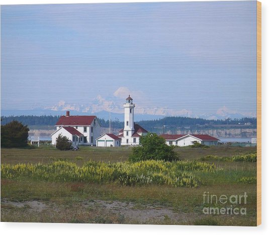 Point Wilson Light Wood Print