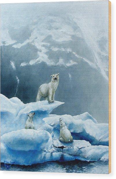 Polar Knowledge Wood Print by Cara Bevan