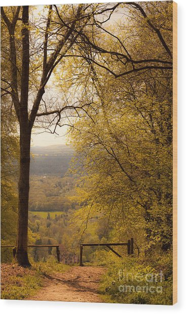 pole fence at top of picturesque view of Steep from Ashford Hang Wood Print
