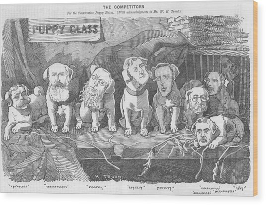 Political Puppy Class Wood Print