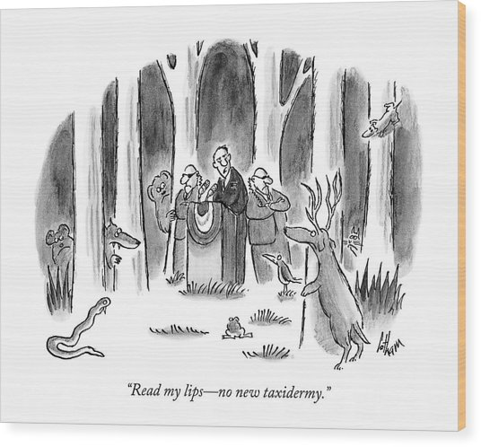 Politician Delivers Speech To Frightened Animals Wood Print