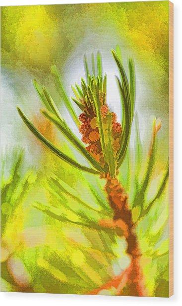 Pollen Cones Wood Print