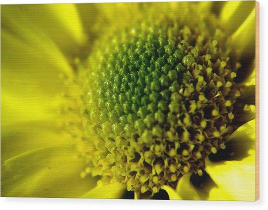 Pollen Factory Wood Print