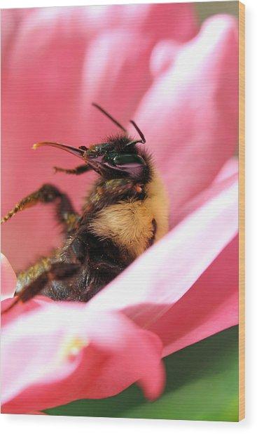 'pollen High' Wood Print