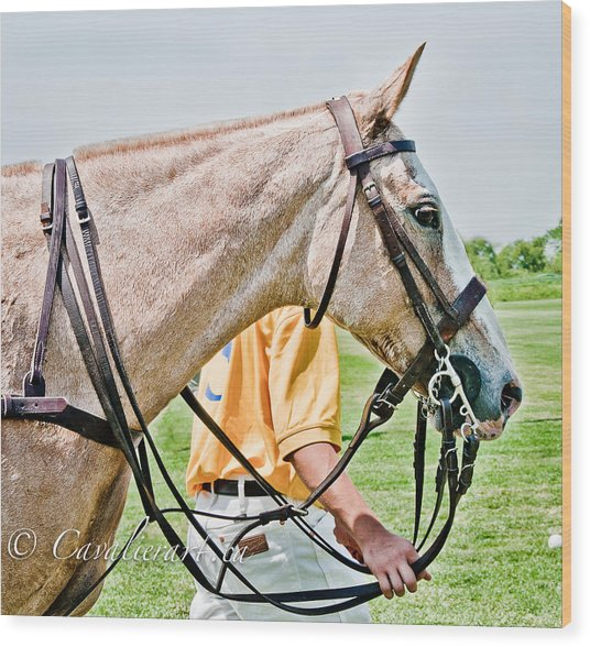 Polo Pony Wood Print by Sherri Cavalier