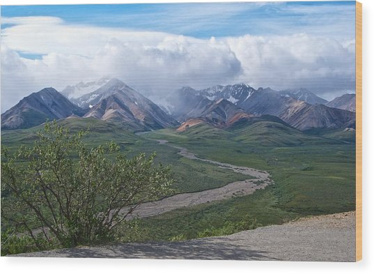 Polychrome Pass Four In Denali Np-ak  Wood Print