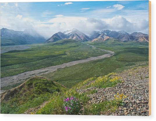 Polychrome Pass Two In Denali Np-ak  Wood Print
