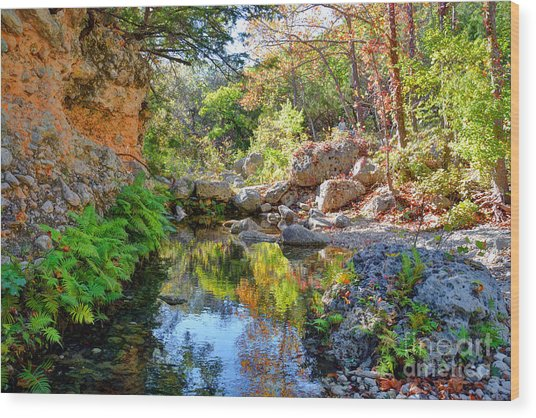 Pond At Lost Maples Wood Print