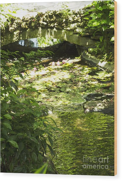 Pond Bridge Wood Print