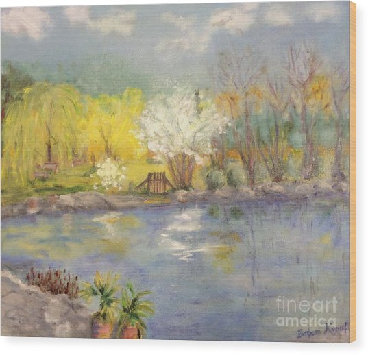 Pond In Ulm Germany In Spring Wood Print