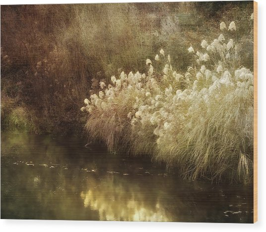 Pond's Edge Wood Print