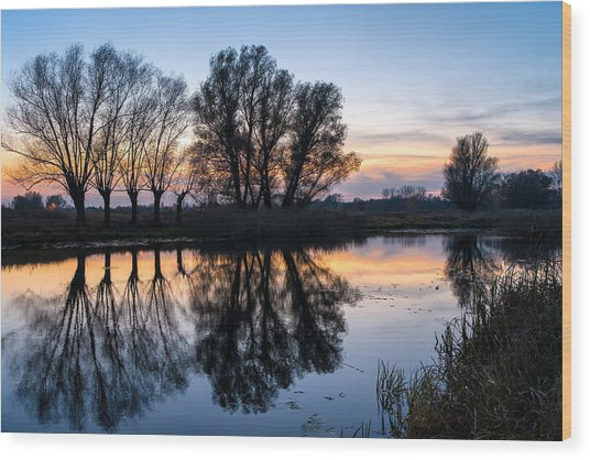 Ponds In Lomna 2 Wood Print