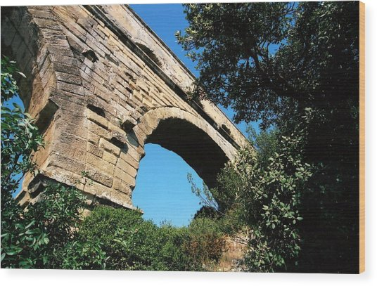 Pont Du Gard Wood Print by Carrie Warlaumont