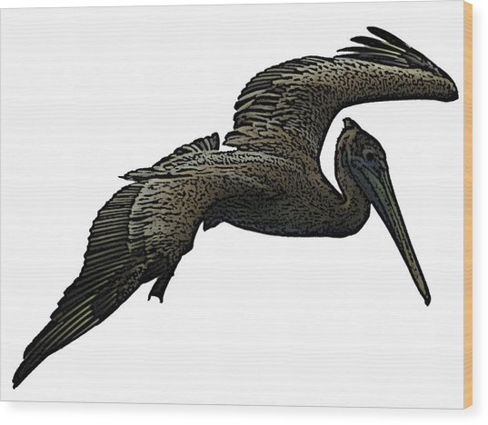 Pop Art - Pelican Selection Wood Print