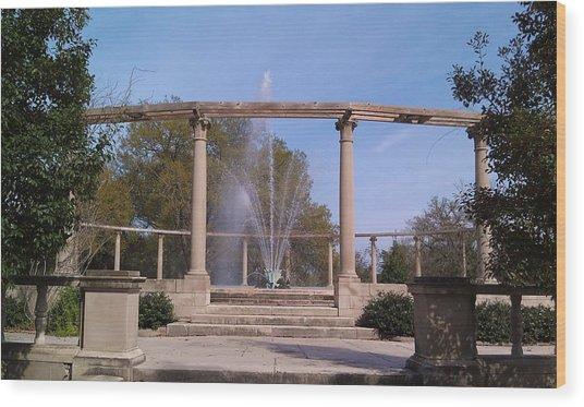 Popp Fountain New Orleans City Park Wood Print