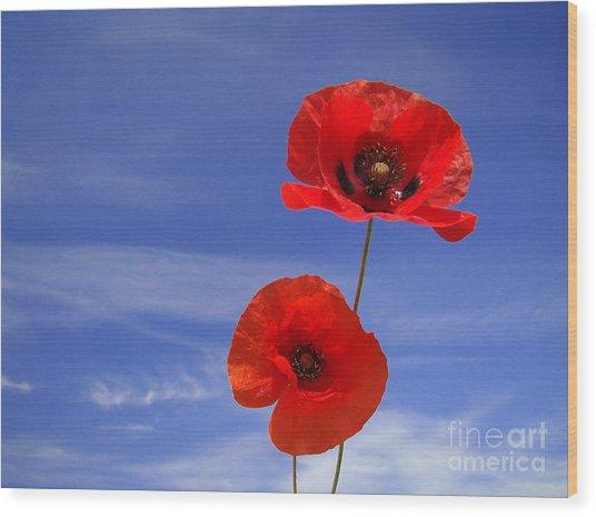 Poppies 02 Wood Print by Giorgio Darrigo