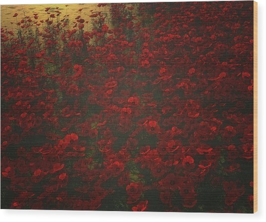 Poppies In The Rain Wood Print
